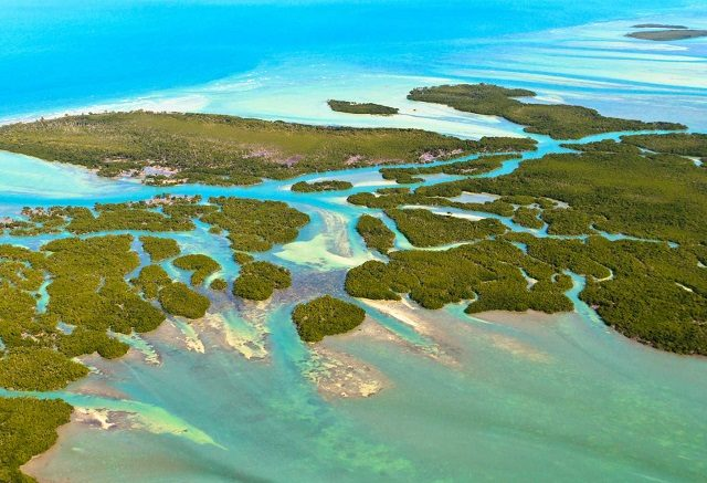 Florida Keys: travel guide through the islands