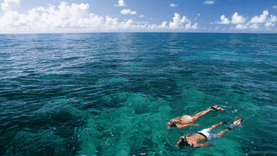Best things to do in Key Biscayne, Miami