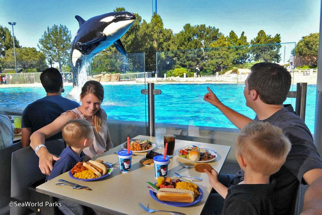 Orca Whale Lunch at SeaWorld